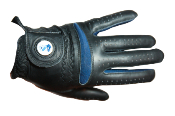 Phi Beta Sigma Golf Glove