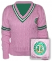 Alpha Kappa Alpha Striped V-Neck Sweater